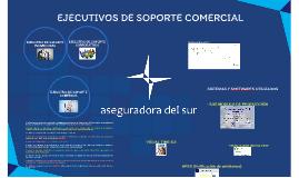 EJECUTIVOS DE SOPORTE COMERCIA