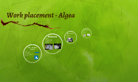 Work placement - Algea