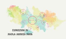 expresion iv