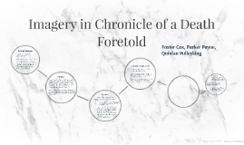 Imagery in Chronicle of a Death Fortold