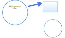 Exec Structure Chart