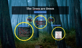 Copy of The Trees are Down