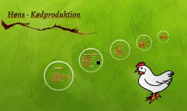Kyllinger - Ægproduktion