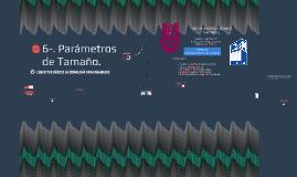 6-. Parámetros de Tamaño