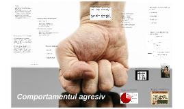 Comportamentul agresiv