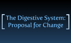 Digestive System Project