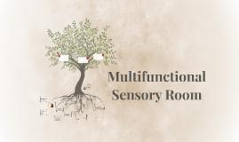 Multifunctional Sensory Room
