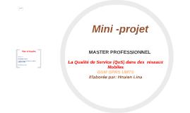 Mini Projet MASTERE PROFESSIONNEL