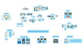 Les relations aux sein de l'ecosystème