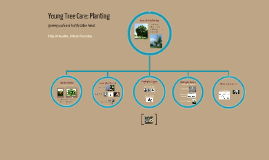 Young Tree Care: Planting (Grow Green Homeowners)