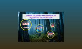 Copy of Relatii concurente si neconcurente ale organismelor intr-un