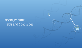Bioengineering Fields and Specialties