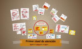 Aportes al Modelo Institutcional  del 1er. Nivel de Atención en Salud
