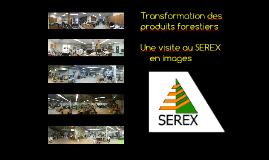 SEREX 2