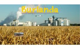 Burlanda