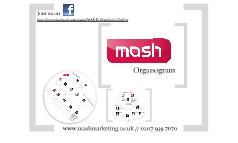 MASH Organogram