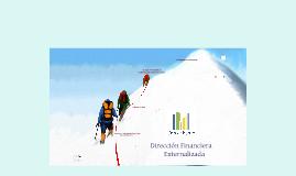 Copy of CrecerPyme. Director Financiero Externo