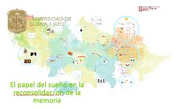 El papel del sueño en la reconsolidación de la memoria