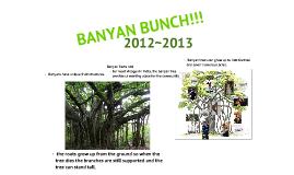 Copy of BANYAN PLAN