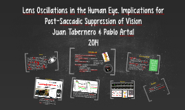 Lens Oscillations in the Human Eye. Implications for