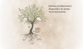 Informe Institucional y Diagnóstico de grupo- Nivel Secundar