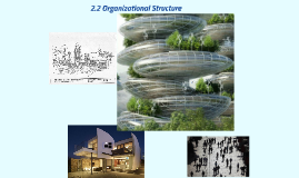 2.2 Organizational Structure