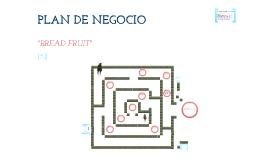 Copy of Segundo Avance Plan de Negocio