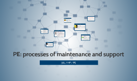 PE: processes of maintenance and support