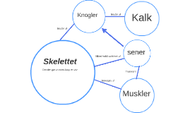 Skellettet