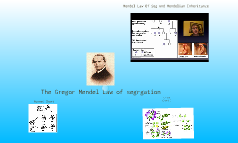 Mendel Theory
