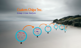 Copy of Custom Chips Inc.