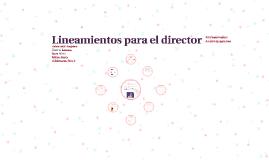 Lineamientos para el director