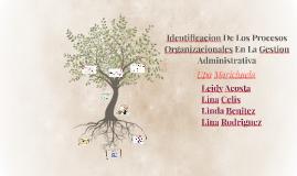 Identificacion De Los Procesos Organizacionales En La Gestio