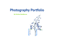 Electronic Photography Portfolio
