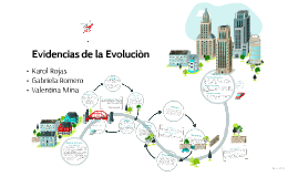 Copy of Evidencias de la Evolucion