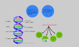 Copy of Cuál es la importancia del ADN