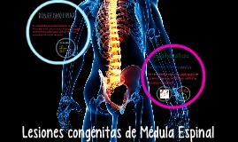 Lesiones congenitas de Medula Espinal