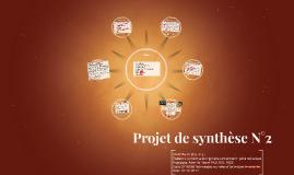 Projet de synthese N°2