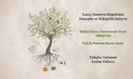 Copy of Kamu Yönetimi Disiplininin Dünyada ve Türkiye'de Gelişimi