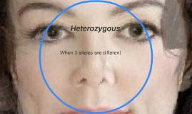 Hetrozygous