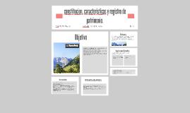 constitucion, caracteristicas y registro de patrimonio.