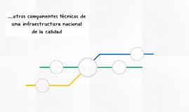 ....otros componentes técnicos de una infraestructura nacion