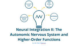 Neural Integration II: The Autonomic Nervous System and Higher-Order Functions