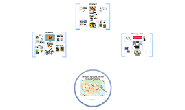 Regions Project