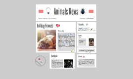 Animals News