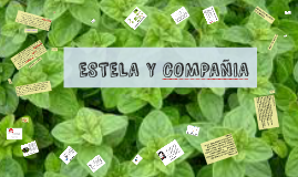 Copy of  ESTELA Y COMPAÑIA