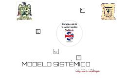 Modelo Sistemico.