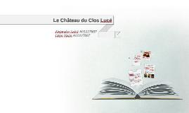 Copy of Le Château du Clos Luce