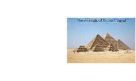 The Animals of Ancient Egypt