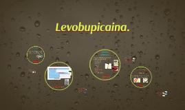 Levobupicaina.
